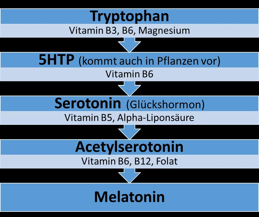 Serotonin-Genese
