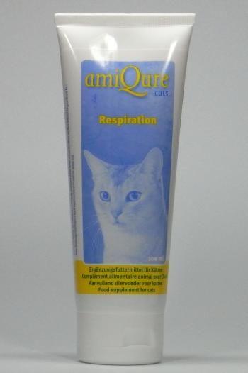 amiqure Cat: Respiration