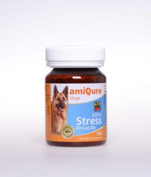amiqure Hund: Anti-Stress