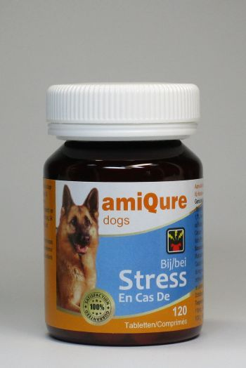 amiqure Hund: Anti-Stress